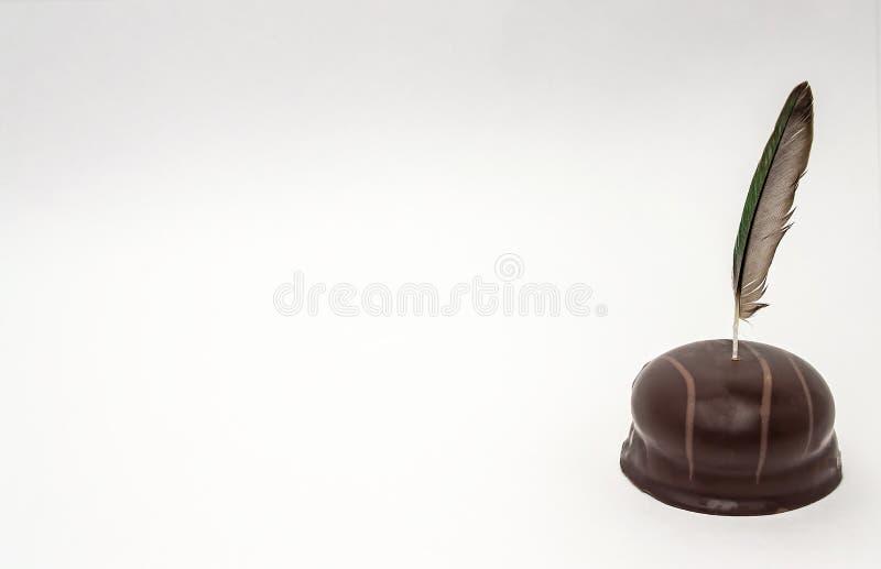 Vogelfeder auf einem weißen Hintergrund im Schokoladenisolatabschluß oben lizenzfreies stockfoto