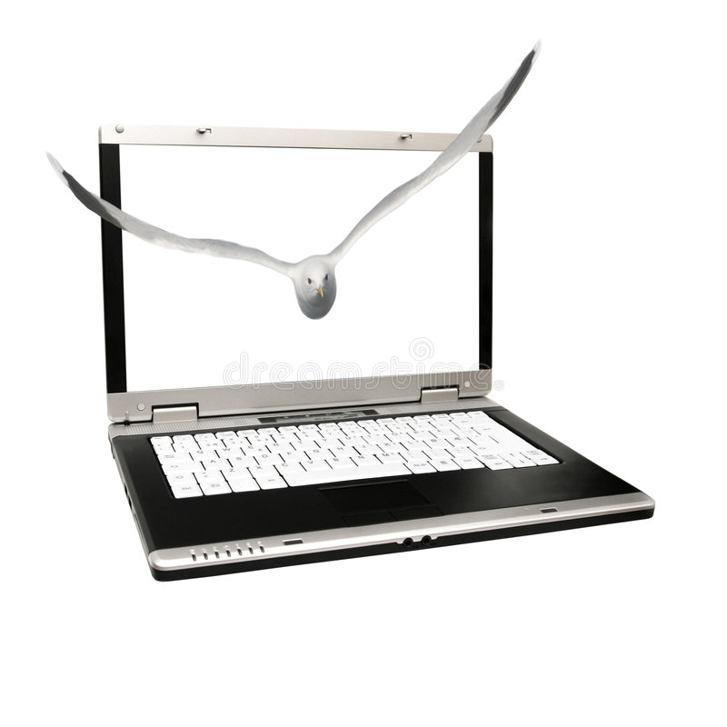 Vogelflugwesen aus einem Laptop heraus stockfotos