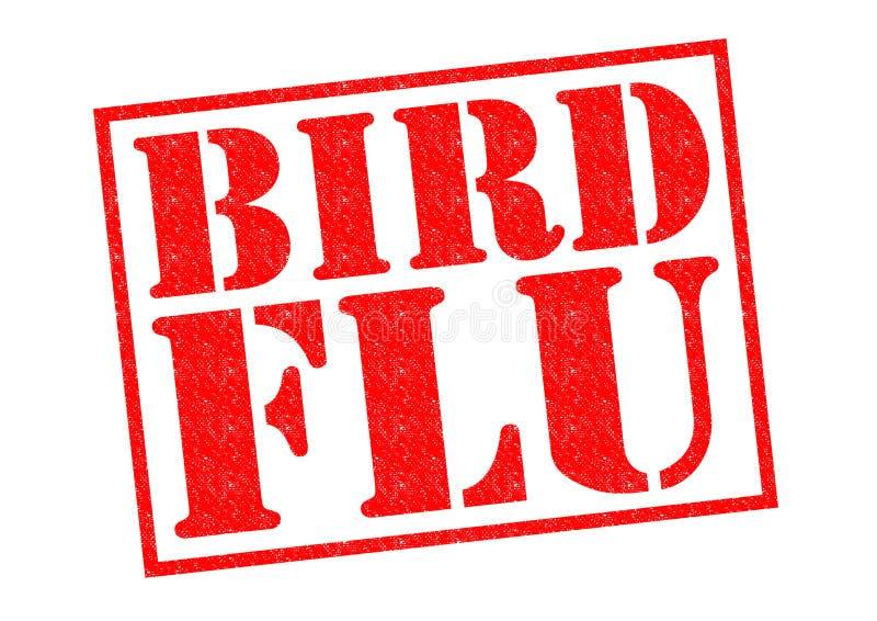 Vogelgriep vector illustratie