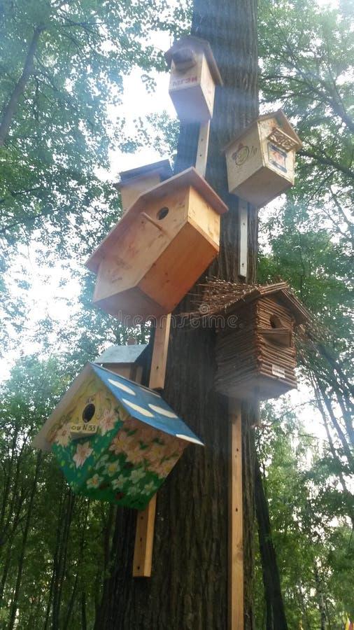 Vogelhaus im Park stockfoto