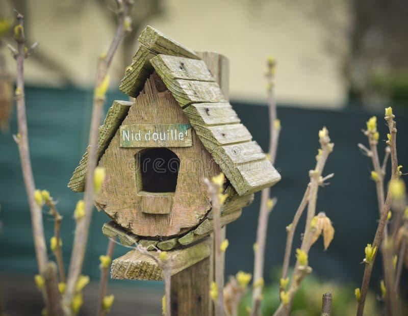 Vogelhaus und die leichten Blätter des ersten Frühlinges lizenzfreie stockbilder