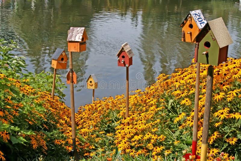 Vogelhuis. royalty-vrije stock afbeelding