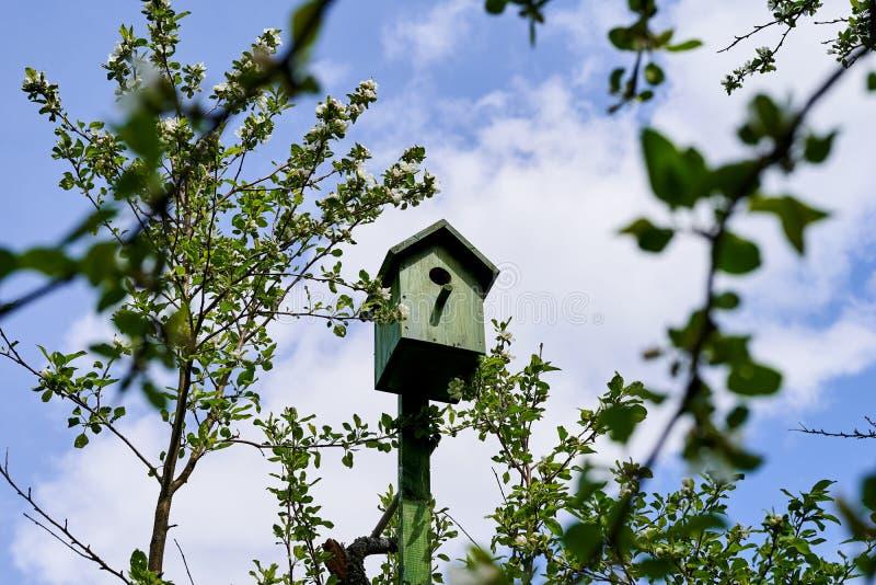 Vogelhuis op een Apple-boom in de tuin stock fotografie