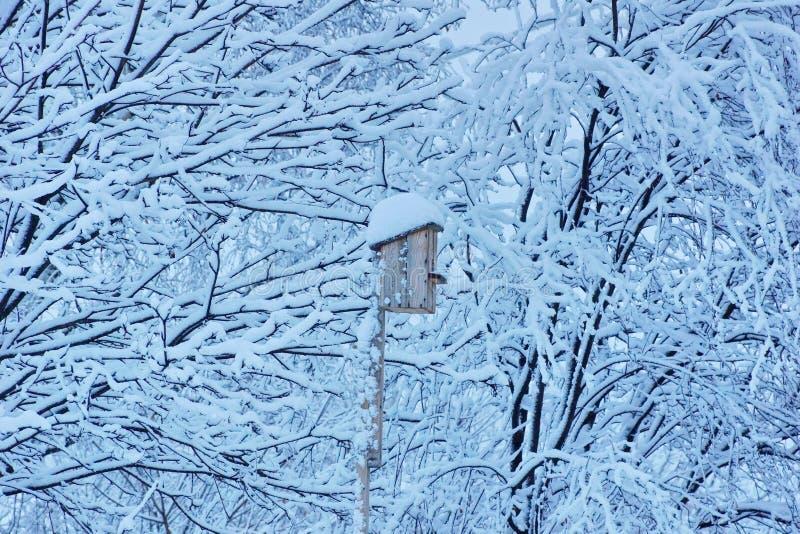 Vogelhuis voor vogels in de winter onder de snow-covered bomen stock afbeeldingen