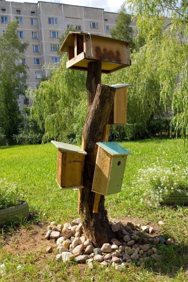 Vogelhuizen en een vogelvoeder in de tuin in de binnenplaats van een gebouw met meerdere verdiepingen stock afbeeldingen