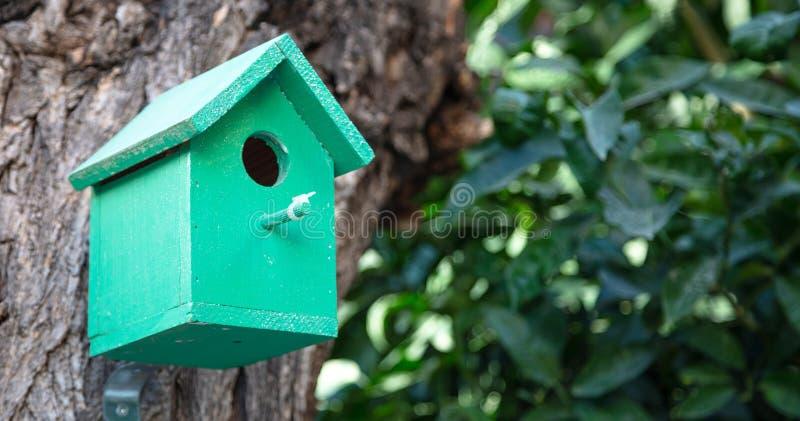 Vogelkabinennest, malte Holz in einem Stadtpark, verwischen grünen Laubhintergrund, Kopienraum lizenzfreie stockfotografie