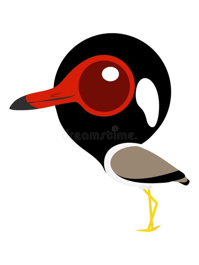 Vogelkarikatur, netter Vogel mit großen Augen, Rotlappenkiebitz lizenzfreies stockbild