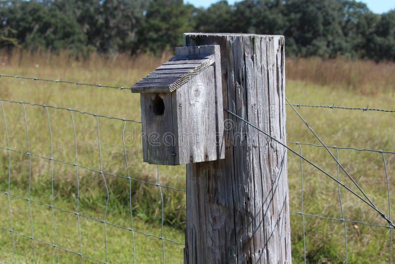 Vogelkasten lizenzfreies stockbild