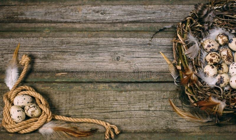 Vogelnest met Kwartelseieren en veer in één kant en kabelrol met ei in andere op rustieke houten achtergrond stock foto's
