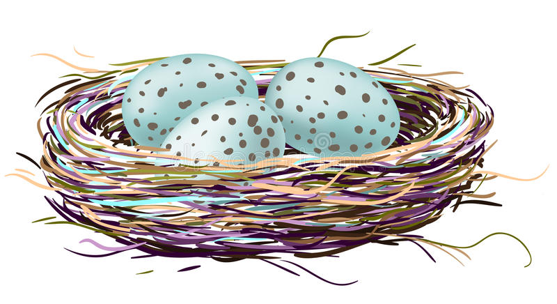 Vogelnest mit Rotkehlcheneiern vektor abbildung