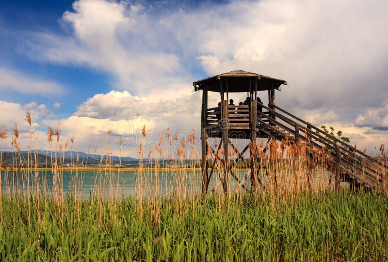 Vogelobservatietoren, Isonzo-rivier royalty-vrije stock fotografie