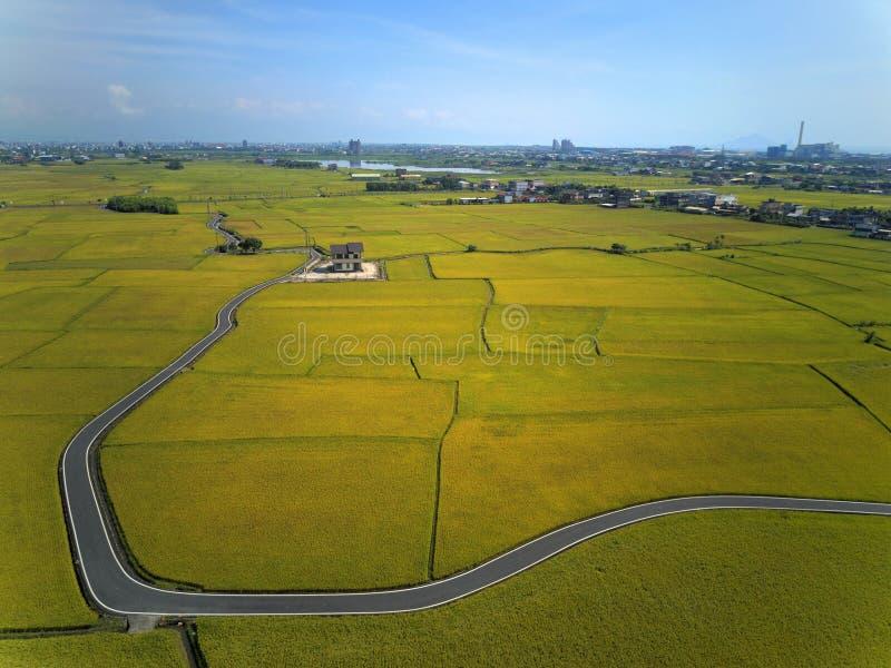 Vogelperspectief van een curvy landweg die door gouden padievelden in Yilan Ilan winden stock fotografie