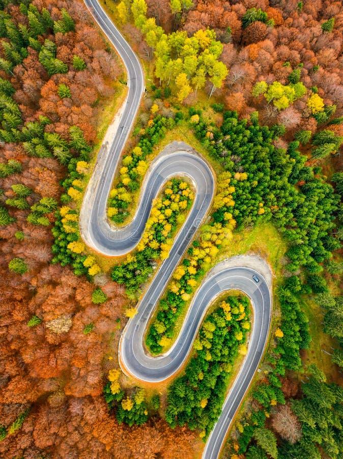Vogelperspektive der curvy Straßenüberquerung Herbstwaldes lizenzfreie stockbilder