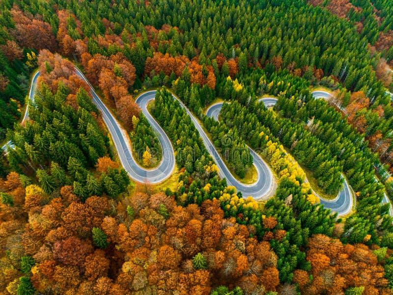 Vogelperspektive der kurvenreicher Straße durch Herbst farbigen Wald stockfotos
