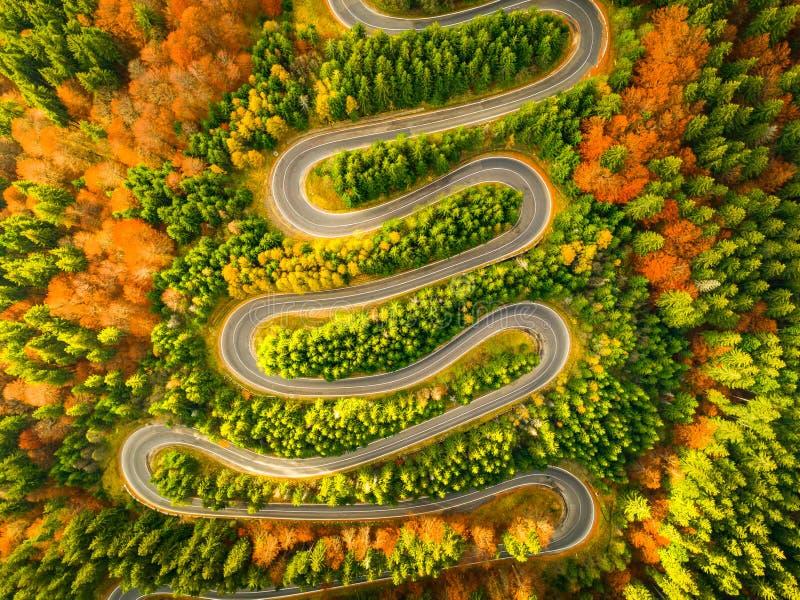 Vogelperspektive der kurvenreicher Straße durch Herbst farbigen Wald stockbild