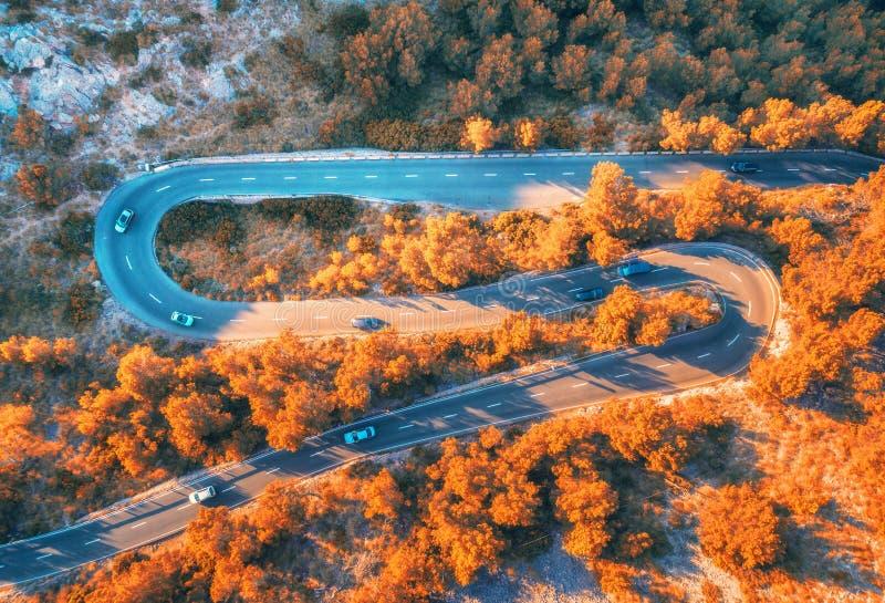 Vogelperspektive der kurvenreicher Straße im Herbstwald bei Sonnenuntergang stockbilder