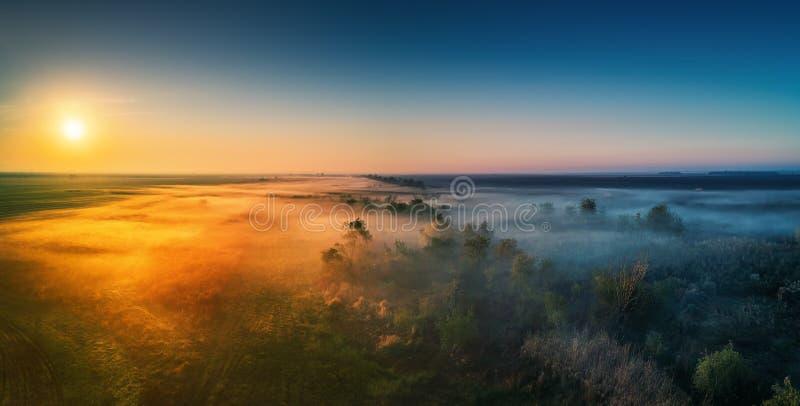 Vogelperspektive der Landstraße mit Wald und der Felder im Nebel lizenzfreie stockfotos
