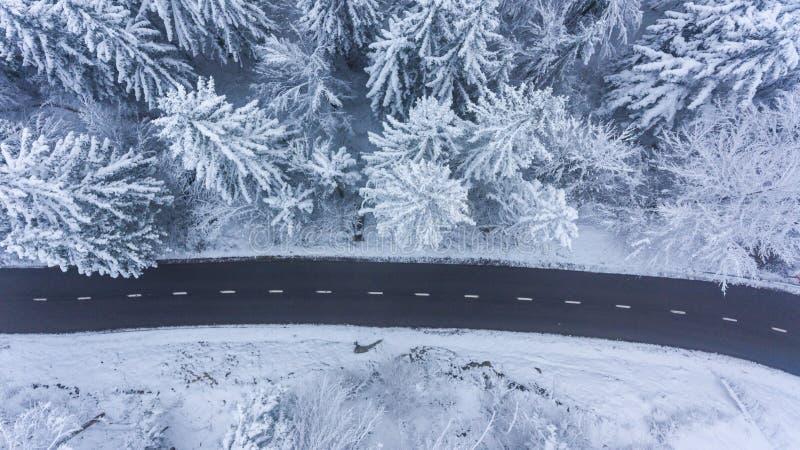 Vogelperspektive der Straße durch einen Winterwald stockfoto