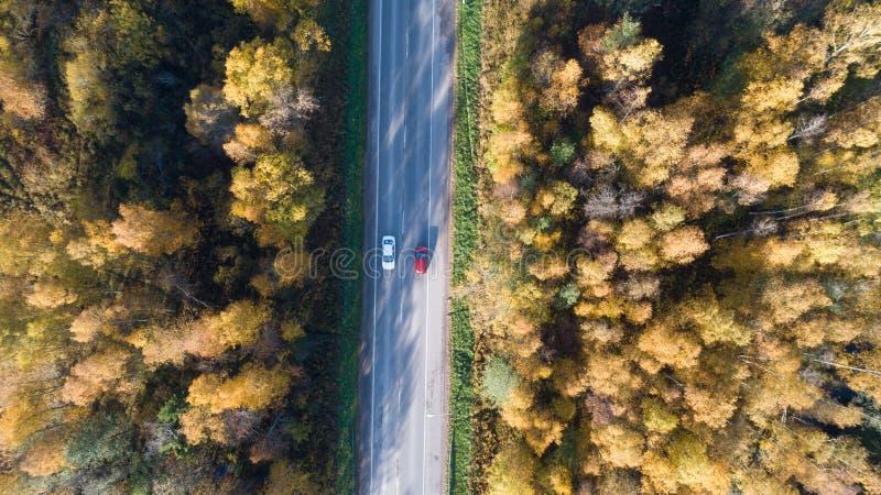 Vogelperspektive der Stra?e im Herbstwald bei Sonnenuntergang Überraschende Landschaft mit Landstraße lizenzfreie stockfotos