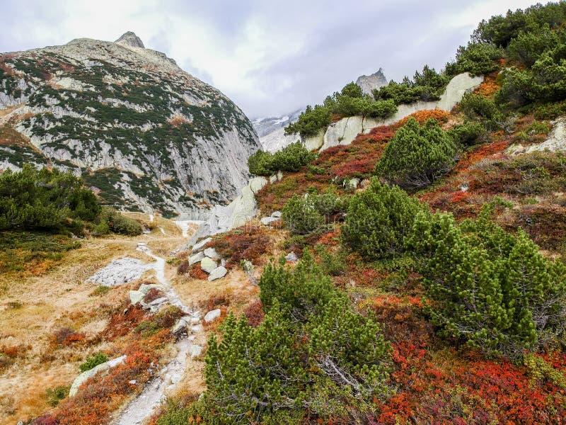 Vogelperspektive des Berges im Herbst lizenzfreies stockbild