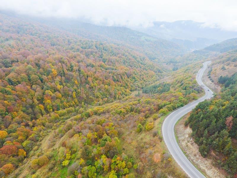 Vogelperspektive des Kurvens der Straße und der Bäume im Herbst lizenzfreie stockfotos