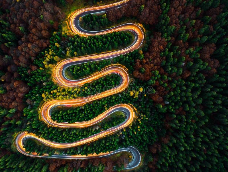 Vogelperspektive des Lichtes schleppt auf einer kurvenreichen Straße durch den Wald im Fall stockbilder