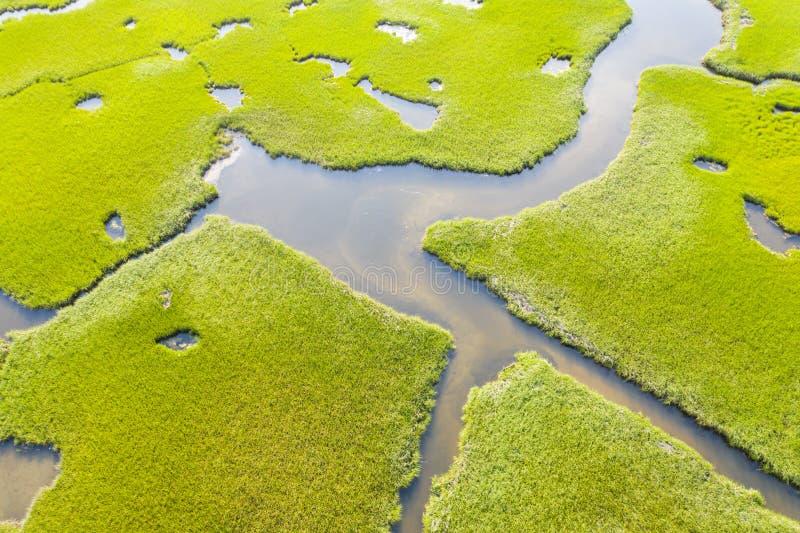 Vogelperspektive des Salz-Sumpfes auf Cape Cod, MA stockfotografie