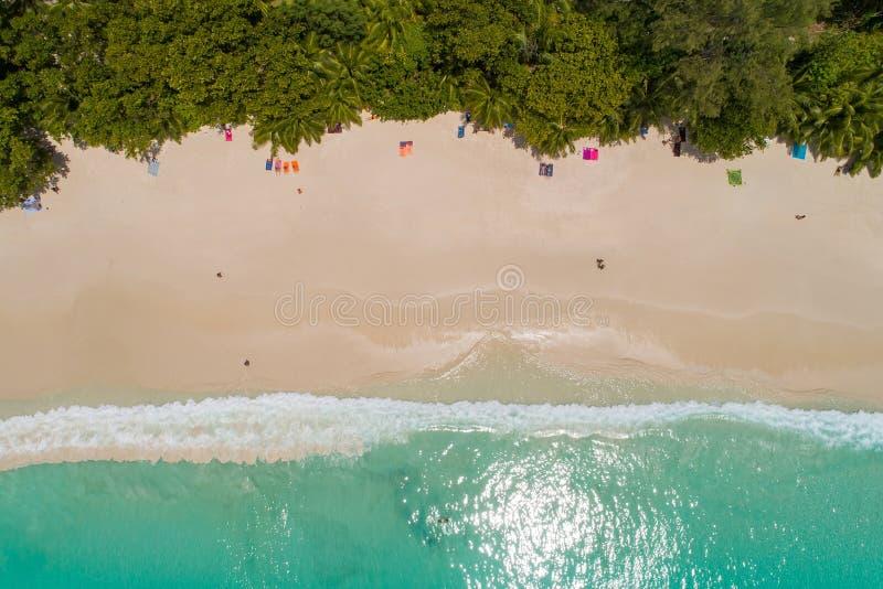 Vogelperspektive des sandigen Strandes mit den Touristen, die im schönen klaren Meerwasser schwimmen stockfotografie