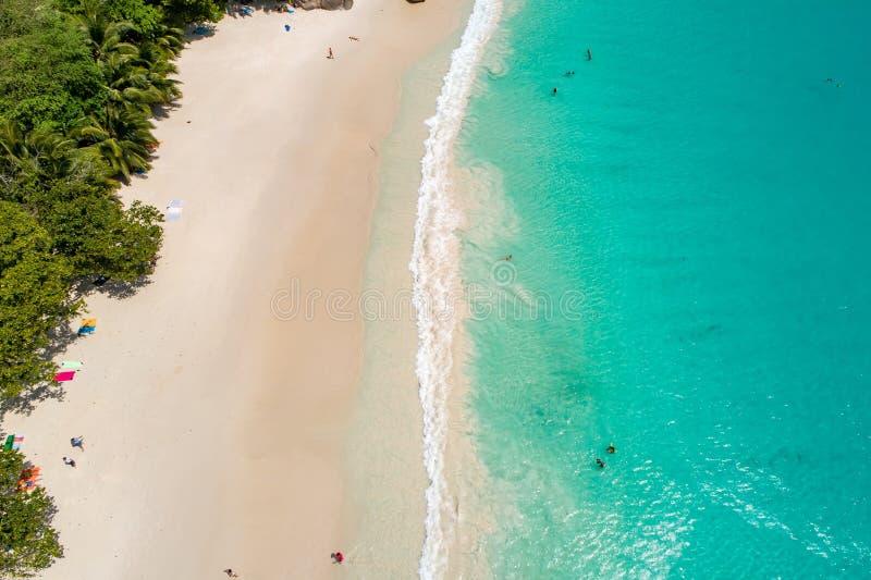 Vogelperspektive des sandigen Strandes mit den Touristen, die im schönen klaren Meerwasser schwimmen stockfoto