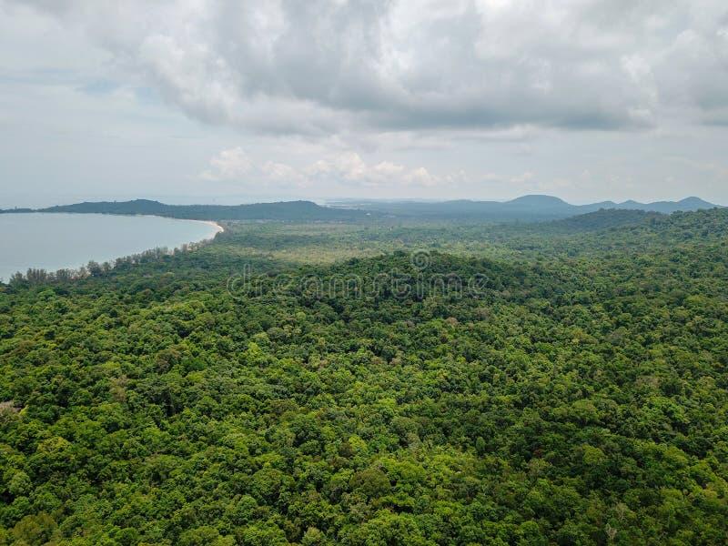 Vogelperspektive des Tropeninseldschungels mit Palmen und klarem Smaragdwasser lizenzfreie stockbilder