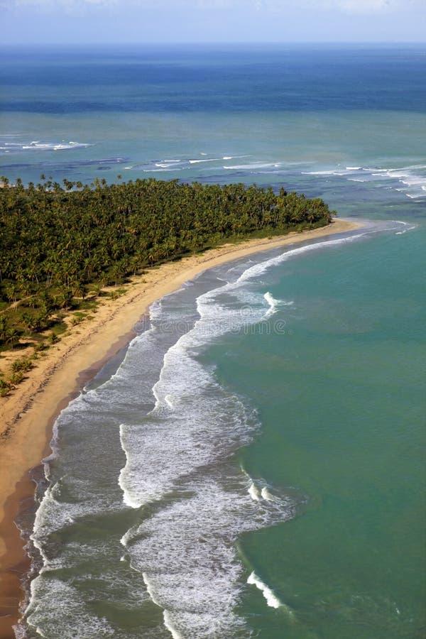 Vogelperspektive des Tropeninselstrandes, Dominikanische Republik lizenzfreie stockfotografie