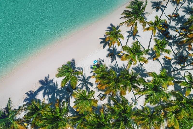 Vogelperspektive des tropischen Strandes, Dominikanische Republik stockbilder