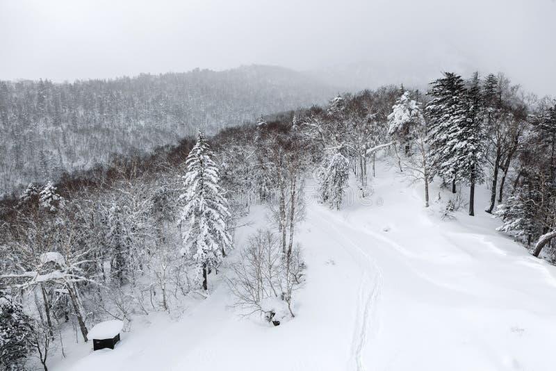 Vogelperspektive des Winters lizenzfreie stockfotografie