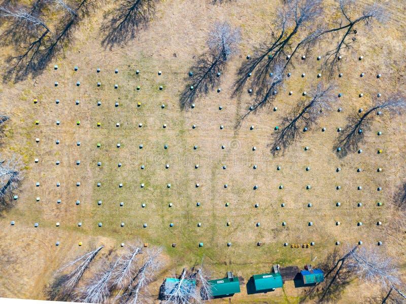 Vogelperspektive eines Bienenhauses mit vielen Bienenstöcken, die kleinen quadratischen Häusern von verschiedenen Farben mitten i stockfotografie