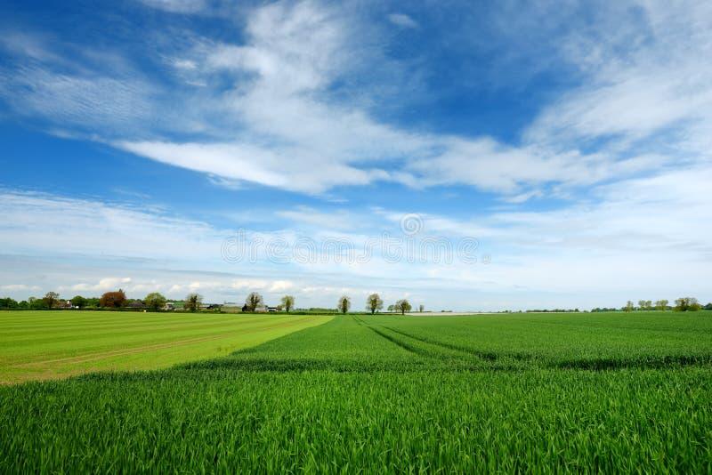 Vogelperspektive von endlosen üppigen Weiden und von Ackerland von Irland Schöne irische Landschaft mit Smaragdgrünfeldern und -w lizenzfreies stockfoto