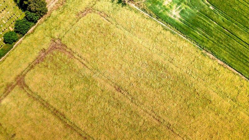 Vogelperspektive von Essex-Landschaft stockbilder