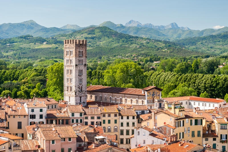 Vogelperspektive von Lucca, in Toskana, während eines sonnigen Nachmittages; der Glockenturm gehört der Kirche Sans Frediano lizenzfreies stockfoto