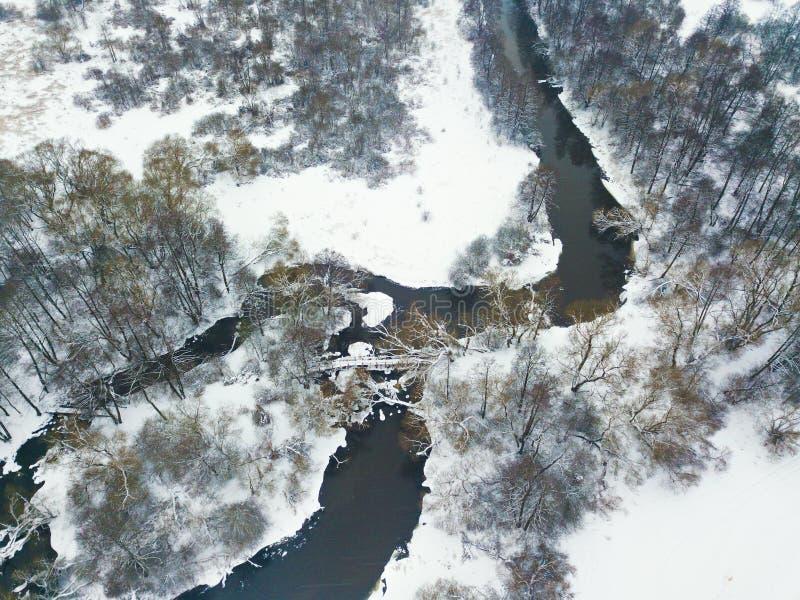 Vogelperspektive von schneebedecktem Fluss im Winter Gefrorene Bäume lizenzfreie stockfotografie
