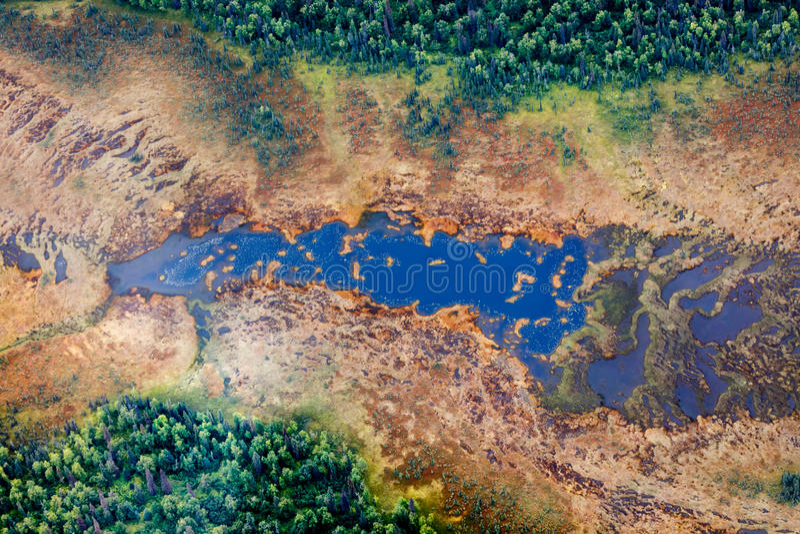 Vogelperspektive von See in einem taiga Wald lizenzfreies stockbild