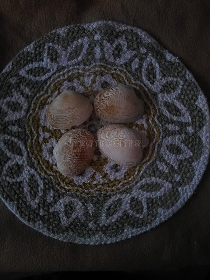 Vogelperspektive von vier bräunen sich und weiße Muscheloberteile auf einer gesponnenen Matte lizenzfreies stockbild