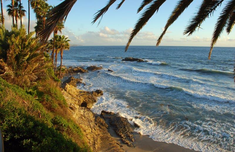 Vogelrots van Heisler-Parklaguna beach, CA royalty-vrije stock afbeeldingen