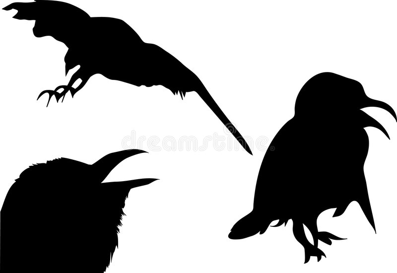 Vogels vector illustratie