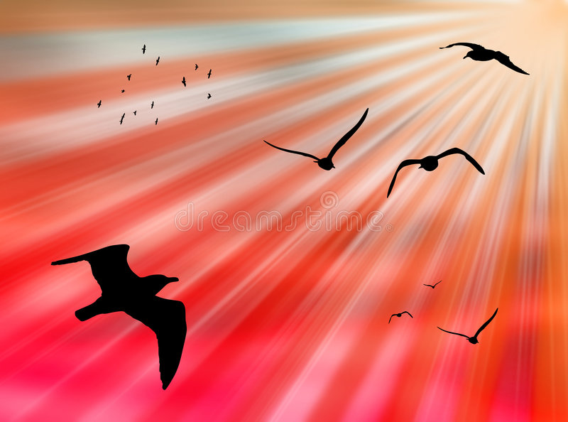Vogels in de zon royalty-vrije illustratie