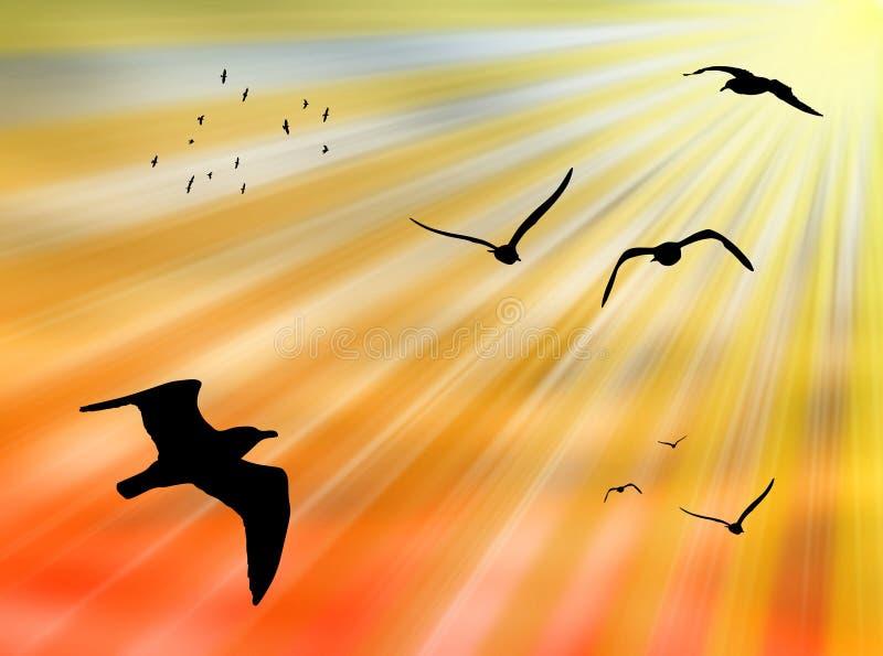 Vogels in de zon vector illustratie