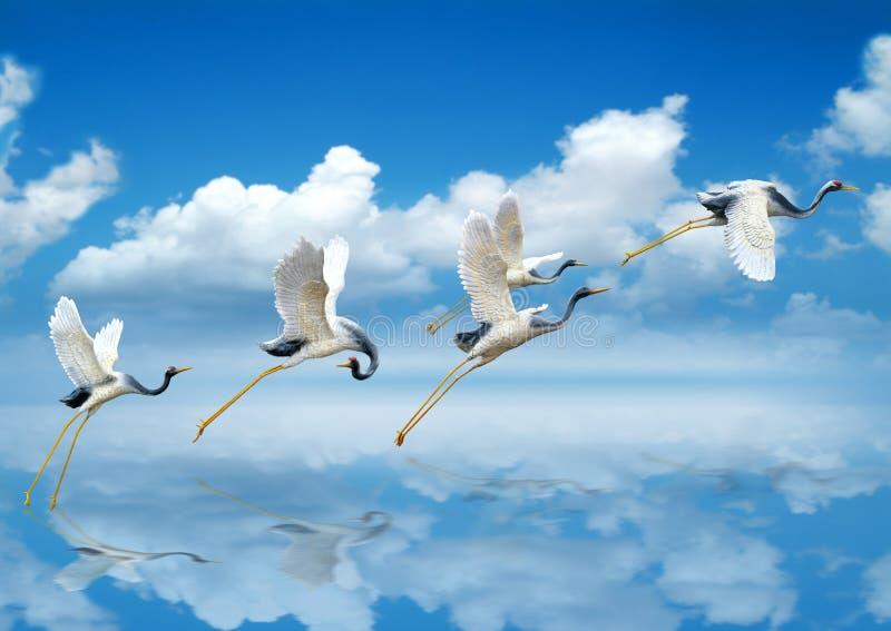 Vogels die aan de Nieuwe Groei opstijgen royalty-vrije stock foto
