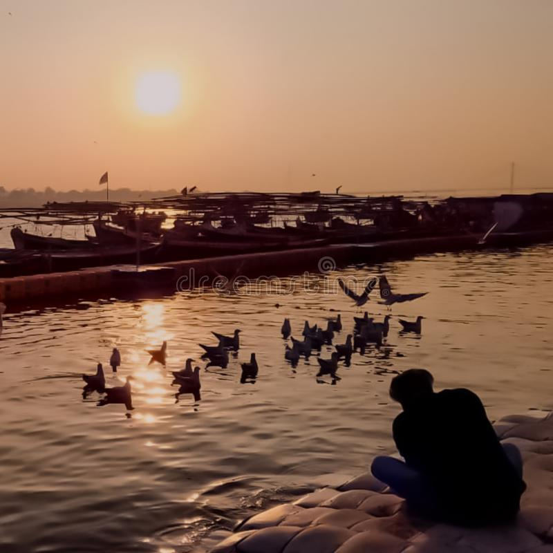 vogels die over de rivier bij zonsondergang vliegen stock afbeelding