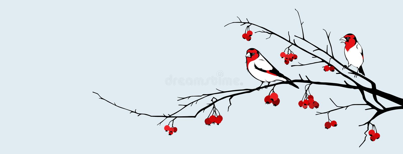 Vogels en haagdoorn vector illustratie