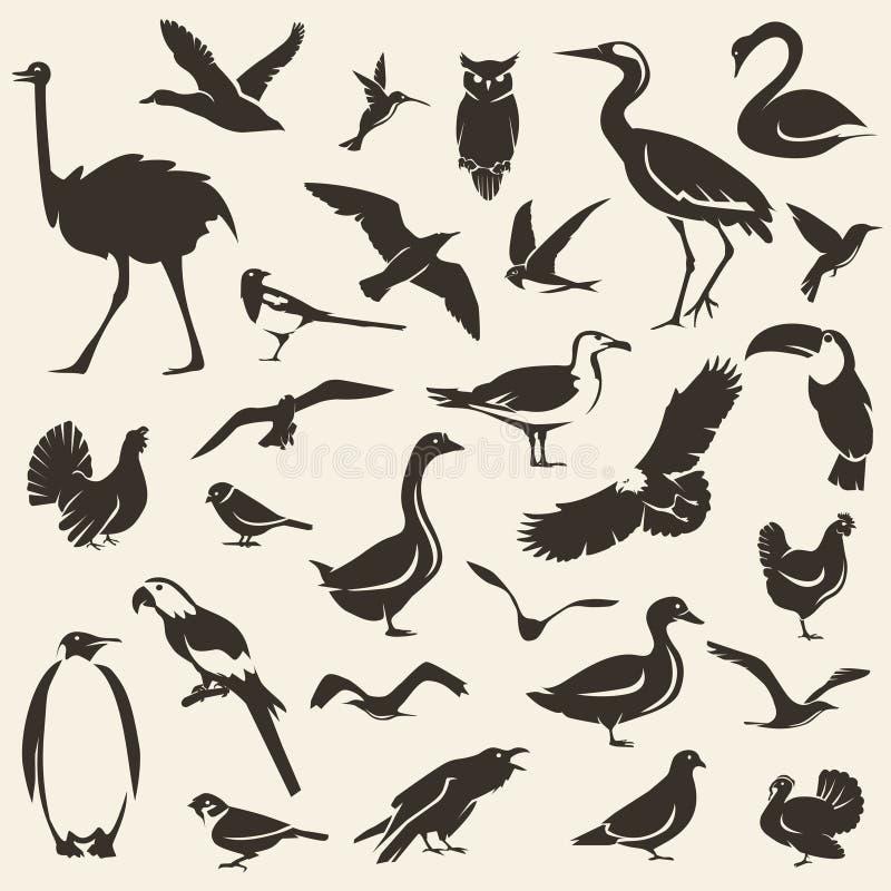 Vogels grote inzameling, gestileerde vectorsilhouetten vector illustratie