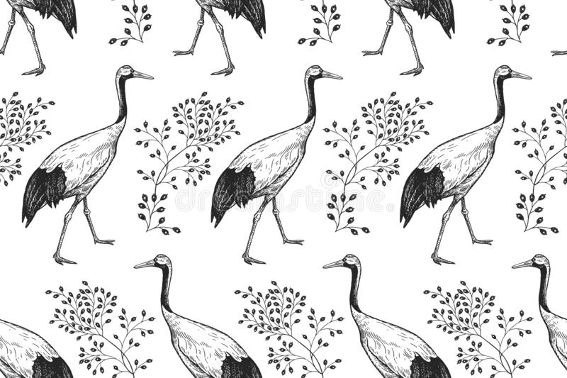 Vogels Japanse kranen en takken Naadloos patroon Zwarte en vector illustratie