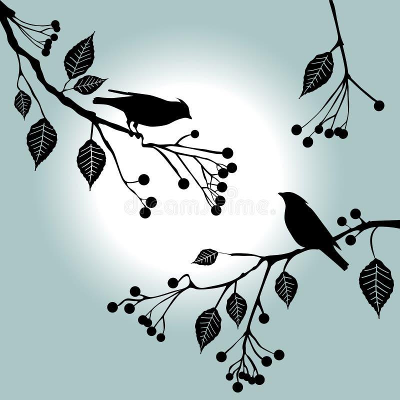 Vogels op de tak. De dagen van de zomer. royalty-vrije illustratie